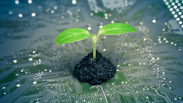 green computing cos'è
